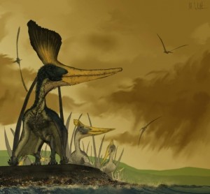 Image of Painting of Pteranodon Sternbergi by Mark Witton